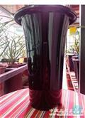 带疏水罩兰花盆优质特大号8个
