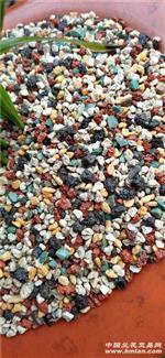 五彩盆面石9斤3-6毫米除偏包邮