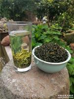 2020新茶   农家白茶