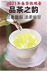 新春茶;安溪铁观音\新枞正味花香型\!!!